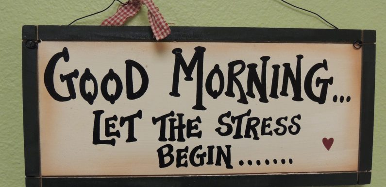 Mangler din familie hjælp i en stresset hverdag?