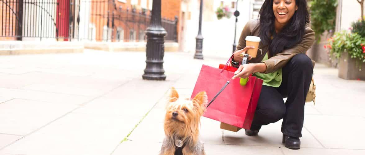 Kunsten at finde den rette hund til børnefamilien