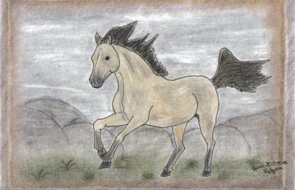 Hvordan tegner man en hest?